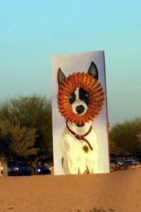 PVCC Public Art