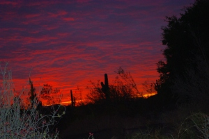 A blazing sunset burns at the last night of Las Noches de las Luminarias.