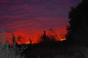 A blazing sunset burns at the last night of Las Noches de las Luminarias.